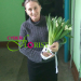 We delivered bouquet of white tulips to Khabarovsk