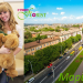 Flower and soft toy delivery to Mariupol