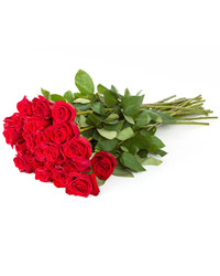 Red Roses. Genichesk